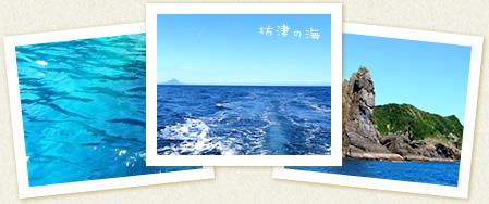 坊津の海の写真